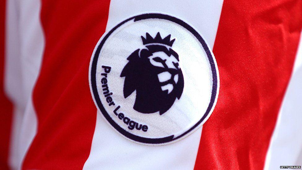 The Premier League's lion logo