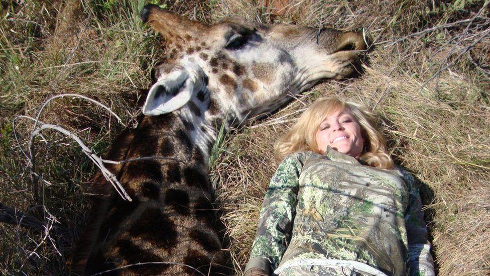Extreme hunter has 'no regrets' after killing a giraffe