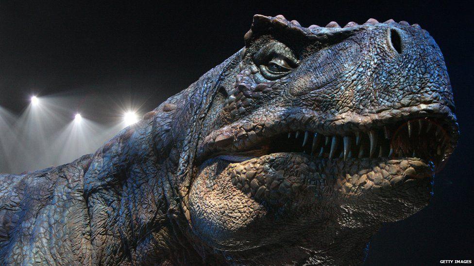 An adult Tyrannosaurs Rex