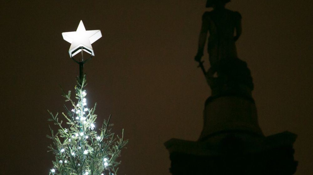 Top of the Trafalgar Square Christmas tree with a star on top