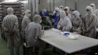 Husi Foods employees stand idle, in this picture released by Xinhua news agency