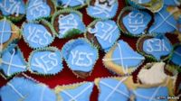 'Yes' campaign cupcakes