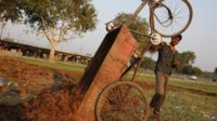 Cart driver unloads dung in India, 23 October 2014