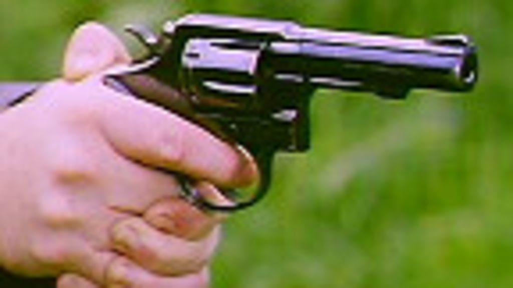 Compras de armas caem 40% no Brasil em seis anos - BBC Brasil