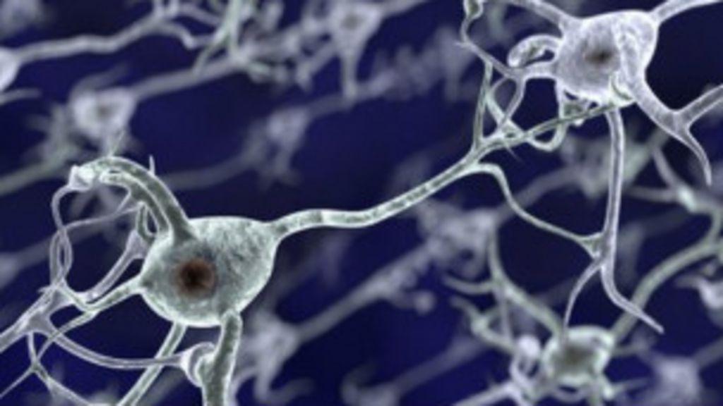 Estudo mostra que cocaína muda estrutura do cérebro em duas horas