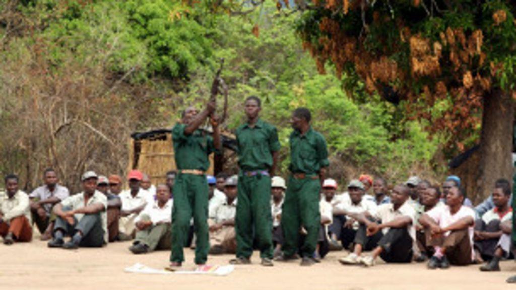 Brasil já tem planos de contingência após ataques em Moçambique ...