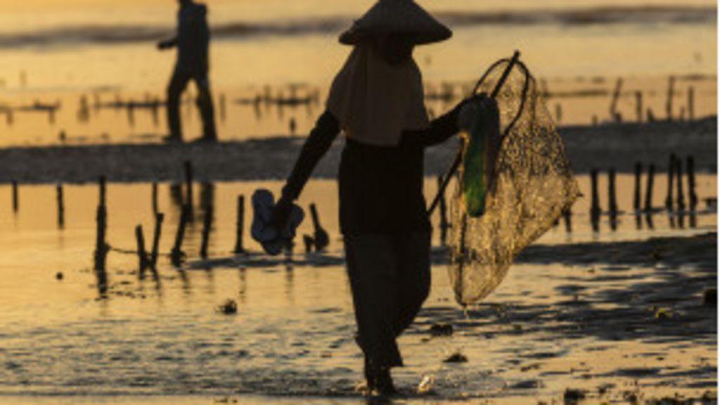 Pobreza ronda maioria dos trabalhadores de países emergentes ...