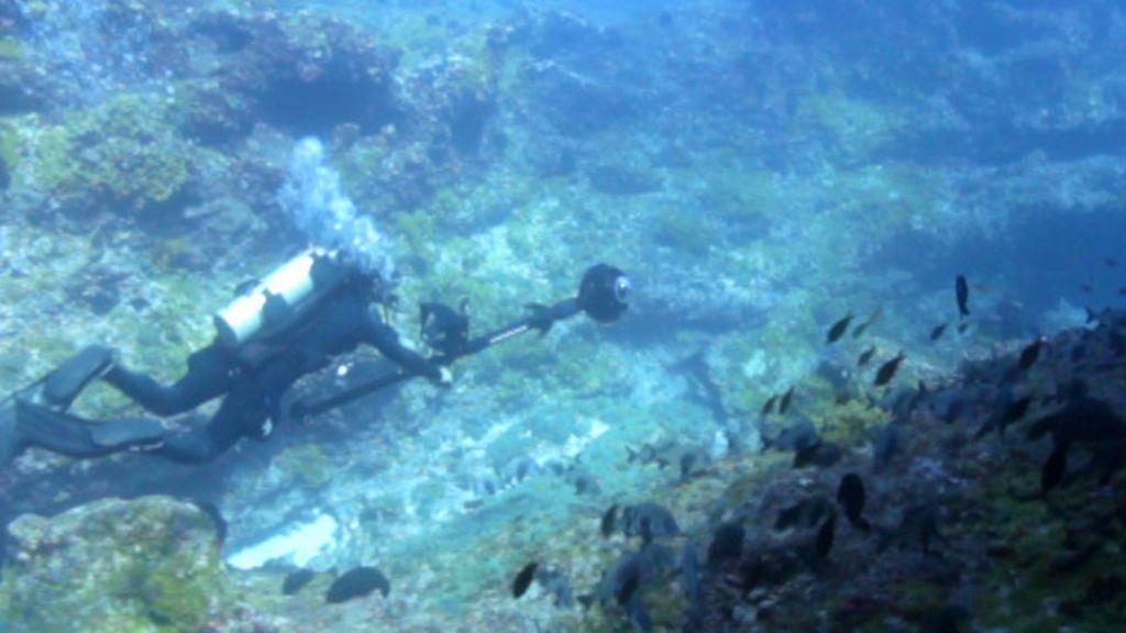 Google mapeia mundo subaquático em Fernando de Noronha ...