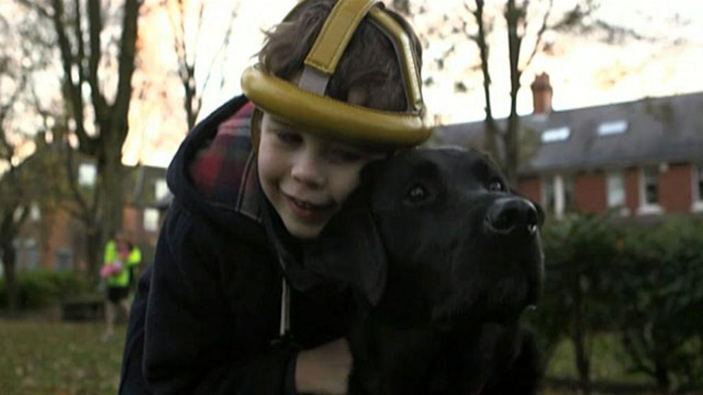 Cão ajuda menino autista a expressar sentimentos pela 1ª vez ...