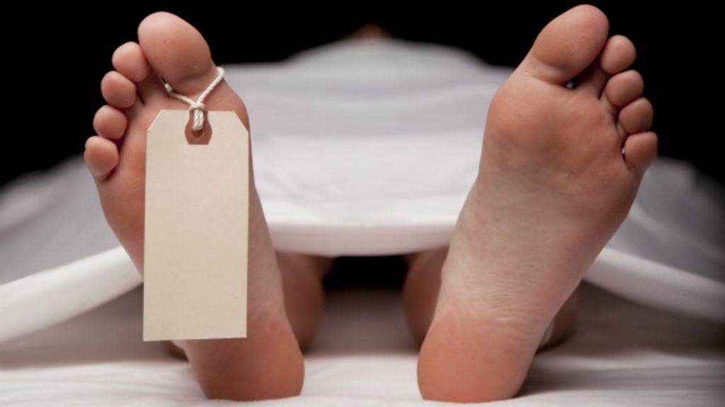 Cientistas identificam 'cheiro' da morte - BBC Brasil