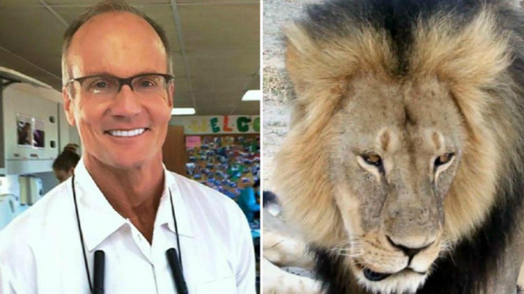 Dentista que matou leão símbolo do Zimbábue diz que não fez nada ...