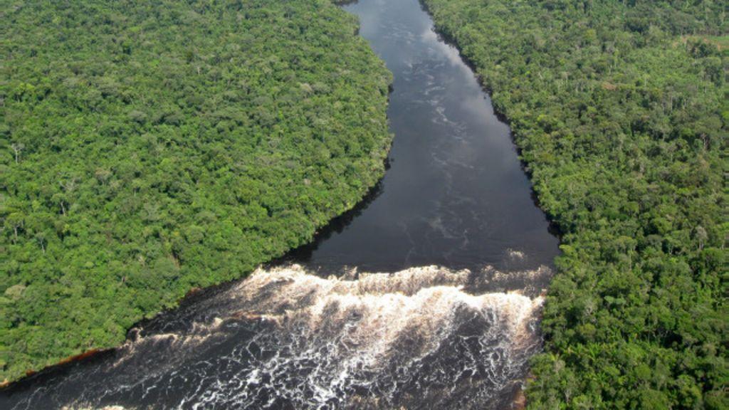 Redução do desmatamento no Brasil 'melhorou ar e salvou vidas ...