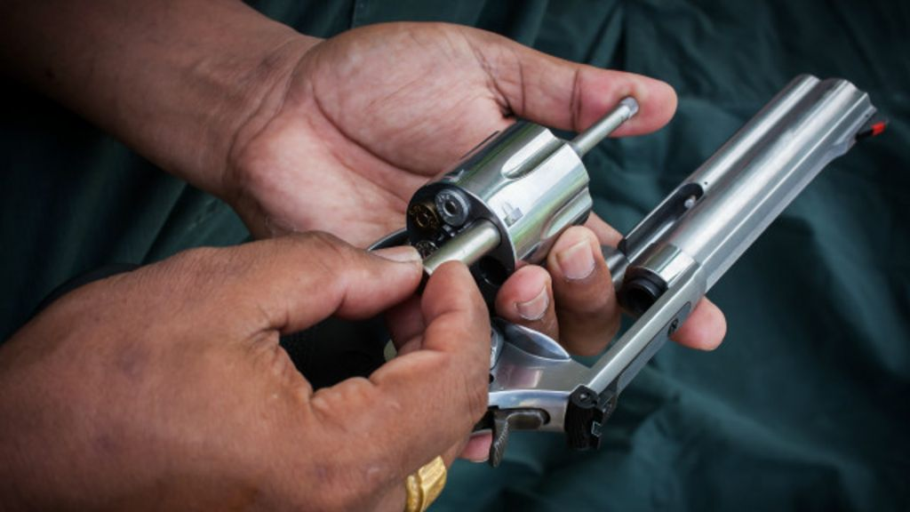 Comissão da Câmara aprova alteração no Estatuto do Desarmamento
