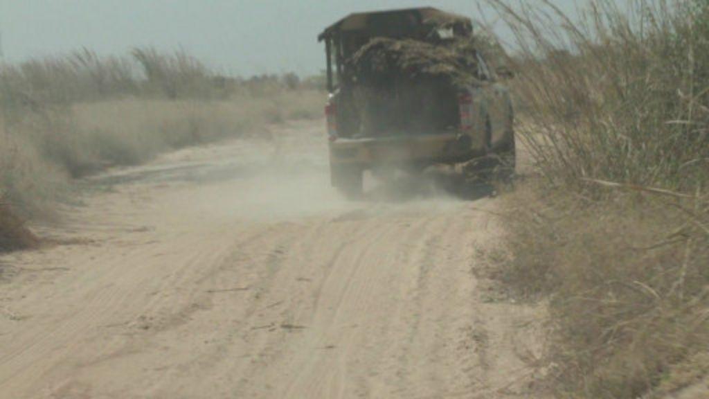 Tawagar BBC ta samu shiga dajin Sambisa - BBC Hausa