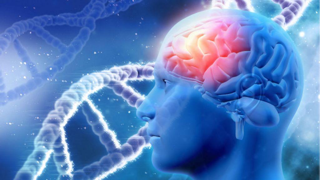 Novo estudo sugere caminho para frear Alzheimer - BBC Brasil
