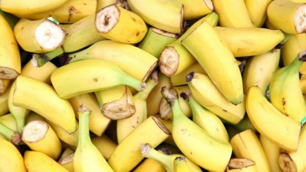Bananas correm risco de extinção - BBC Brasil