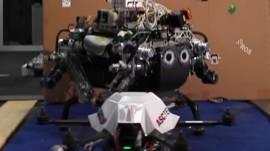 Robots colaboradores