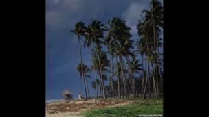 Colombo, Sri Lanka. David Constantine