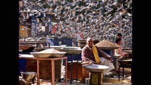 Vendedor de frijoles en la ciudad de Jaipur, en el norte de India