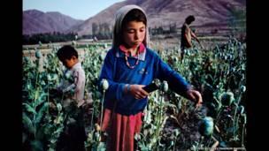 Niños trabajando en un cultivo de opio, Badakhshan, 1992. Steve McCurry/Magnum Photos