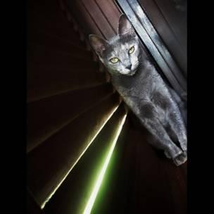 """Foto de una lectora de BBC Mundo por el tema """"luces y sombras"""""""