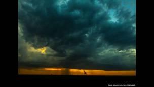 Jirafa en la lluvia al anochecer. Paul Goldstein / Rex Features
