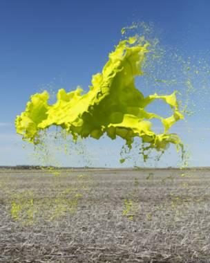 """Fotografía de la serie """"Colourant"""", de Floto+Warner. Crédito: Floto+Warner."""