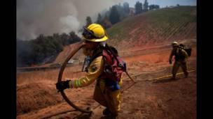 """Bomberos del condado de Marin –en el norte de área de la Bahía de San Francisco– acarrean una manguera para combatir las llamas del veloz """"Incendio de Arena"""", cerca de Plymouth, California. REUTERS"""