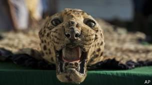 Alfombra de leopardo