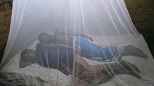 Personas durmiendo con la protección de una red para los mosquitos