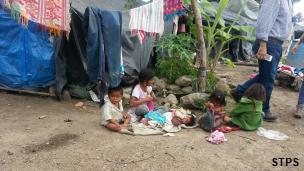 Niños jornaleros agrícolas en Colima