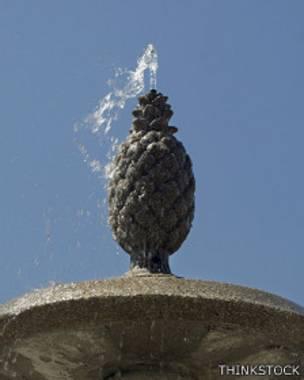 Piña en fuente