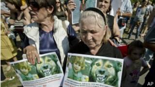 Manifestación para sacrificar a perros callejeros en Rumanía