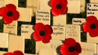 प्रधानमंत्री, पॉपी का फूल, लंदन,  डायरी, पॉपी का फूल
