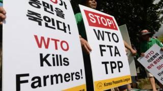 Manifestantes anti-OMC   Foto: AFP