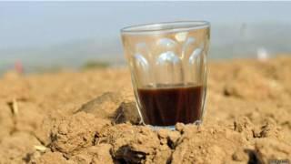 Café en el desierto