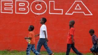 Fin del ébola en Africa Occidental