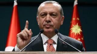 اردوغان ځان ته د 'سپکاوي' له ټولو شکایتونو تېر شوی