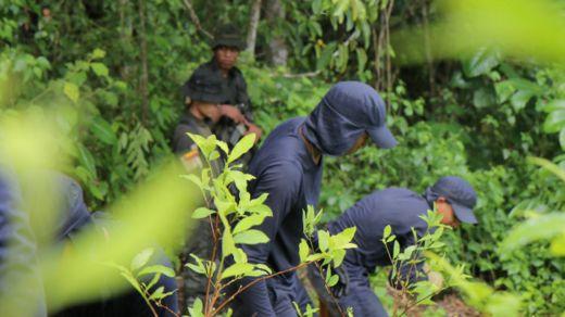 Erradicadores con policía de fondo