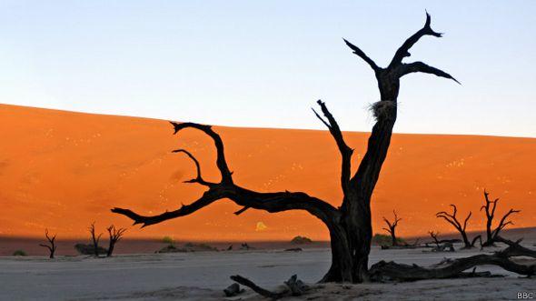Desierto en Namibia