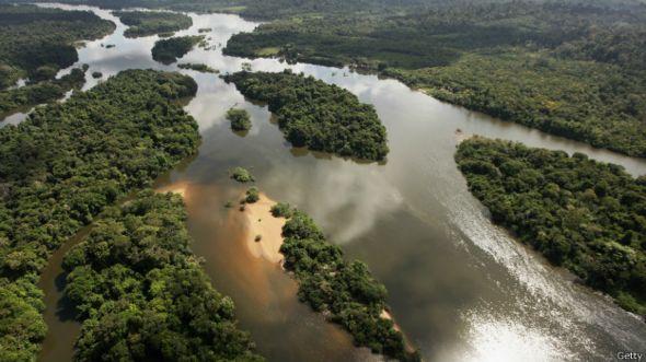 Selva tropical.