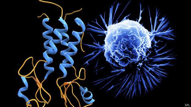 Gen BRCA comparado con una célula cancerígena