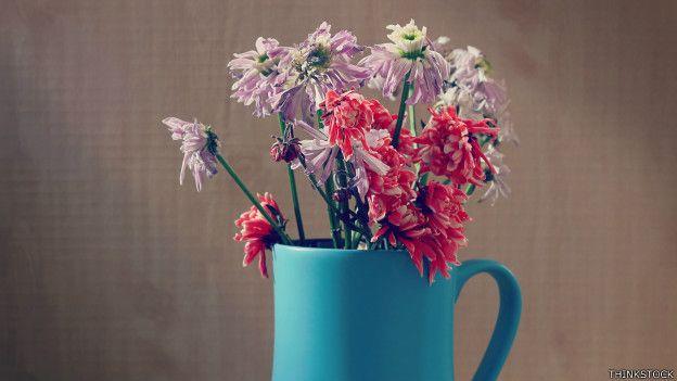 Flores marchitas en un jarrón