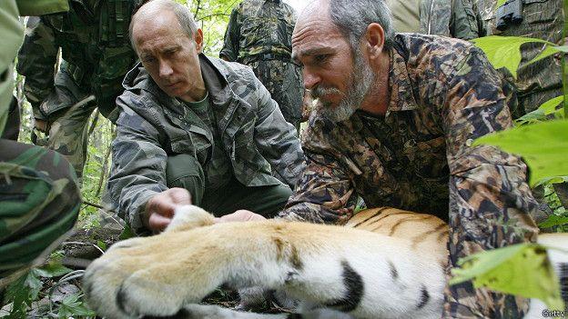 Путин и усыпленная тигрица