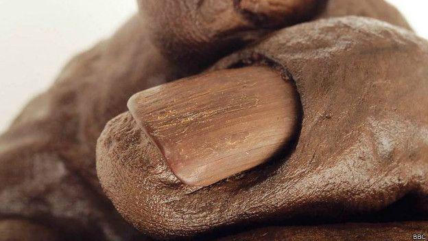 Fragmento del hombre de Cashel, una momia natural encontrada en un pantano de Irlanda.