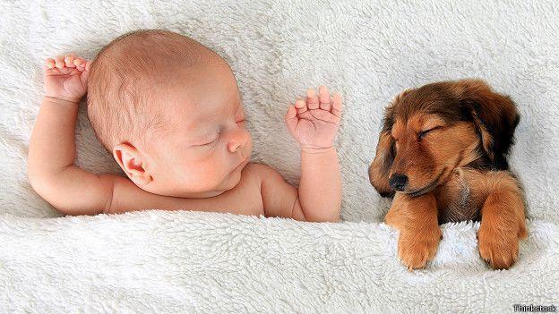 Маленький ребенок в постели рядом с собачкой