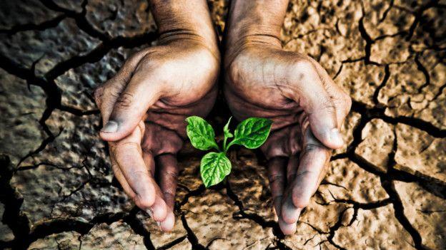 Imagen genérica sobre la sequía