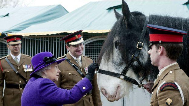 Королева и лошадь