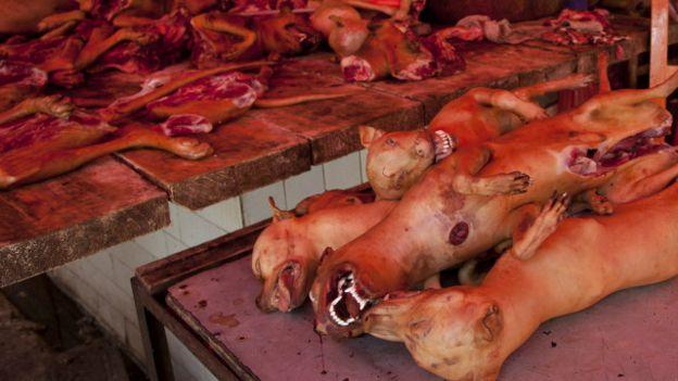 Certains congolais mangent la viande de chien à Kinshasa