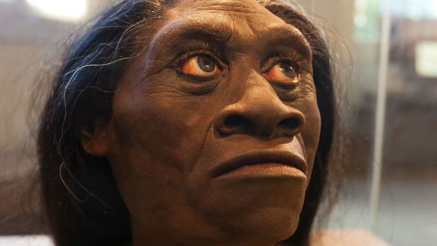 Homo florensiensis